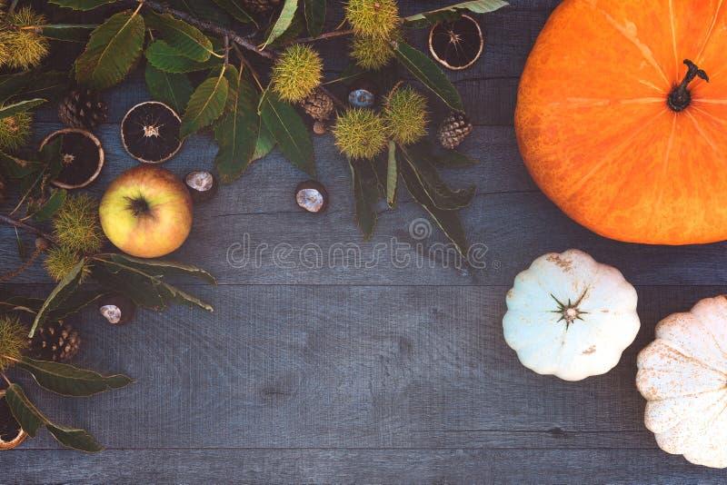 Vakantie en seizoen - herfst stock foto's
