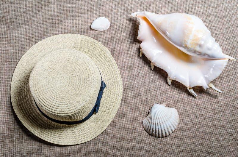 Vakantie vlakke mening met overzeese shellsseashells van de strohoed en stock afbeelding