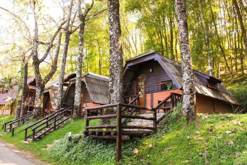 Vakantieflat - houten plattelandshuisje in bos stock foto