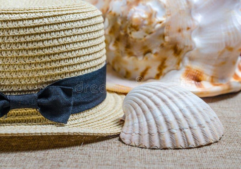 Vakantiestilleven met overzeese shells van de strohoed en royalty-vrije stock afbeelding