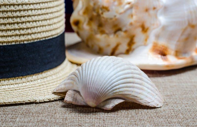 Vakantiestilleven met overzeese shells van de strohoed en stock foto's