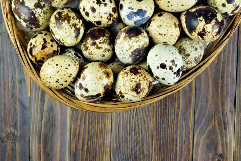 Vaktelägg av rapphönafåglar i en korg på en träbakgrund Äggen har en prickig färg, är skalet tunt och bräckligt I royaltyfria foton