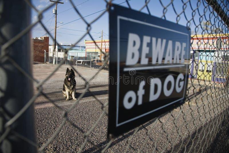 "Vakthunden bak ""akta sig av hund"" tecken på staketet arkivbild"
