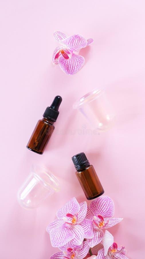 Vakuumdosen für Körper auf rosa Untergrund Gummi-Ausrüstung für die Cellulite-Massage stockfoto
