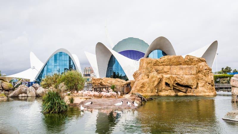Valência, Espanha - 4 de dezembro de 2016: Construção principal de oceanográfico imagem de stock royalty free