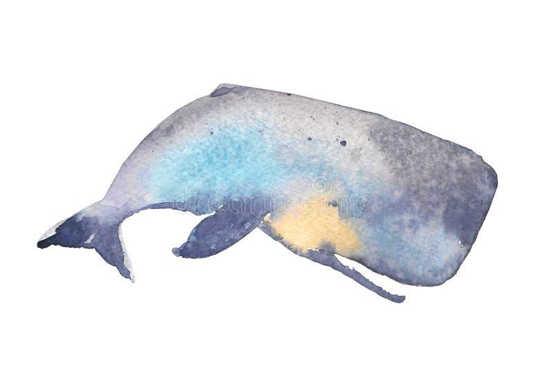 val colors härlig blur för djur bakgrund havet för bläckfisken för den croatia fokusfotoen det octpous olikt mycket Vattenfärg Ha royaltyfri illustrationer