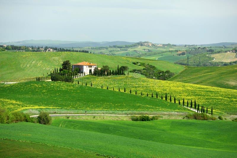 Val d'Orcia, Tuscany, Italy royalty free stock photography