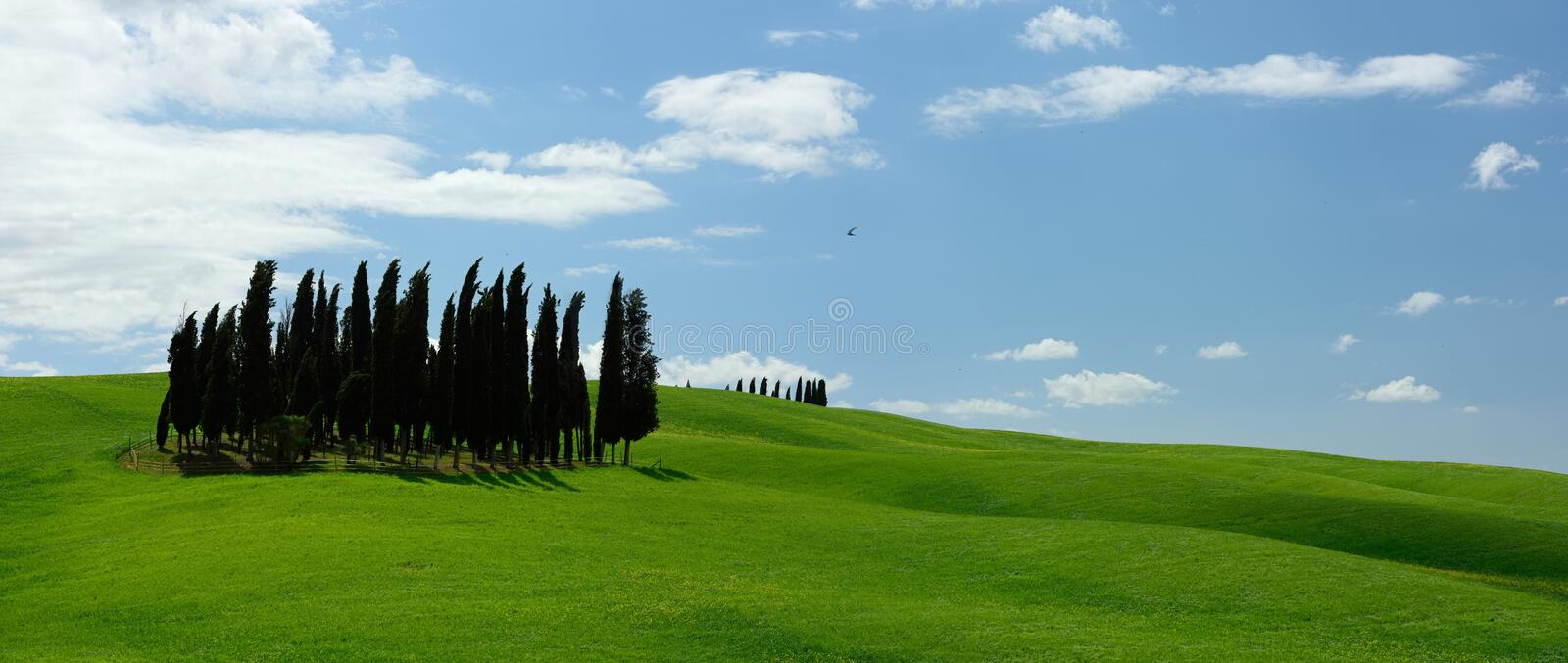 Val d'Orcia, Tuscany, Italien arkivfoto