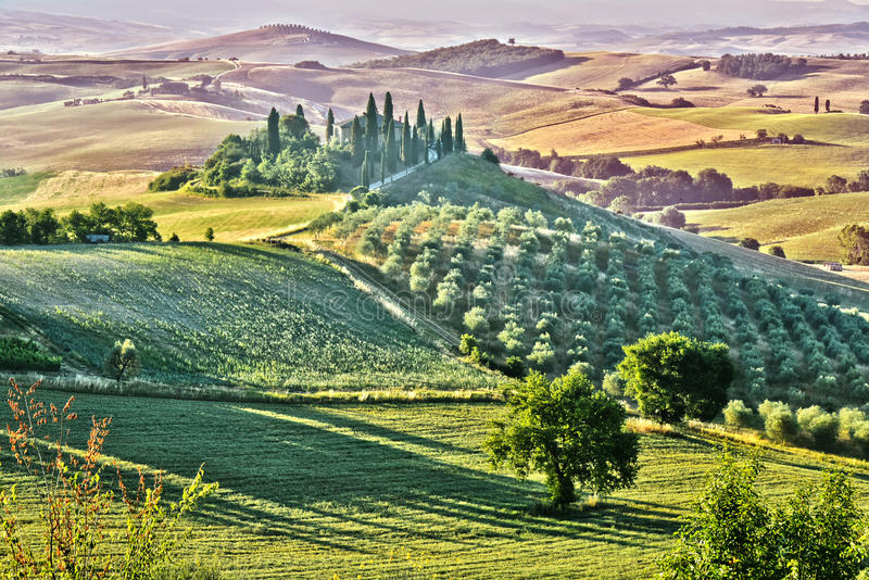 Val d& x27风景视图; Orcia,托斯卡纳,意大利 免版税库存图片