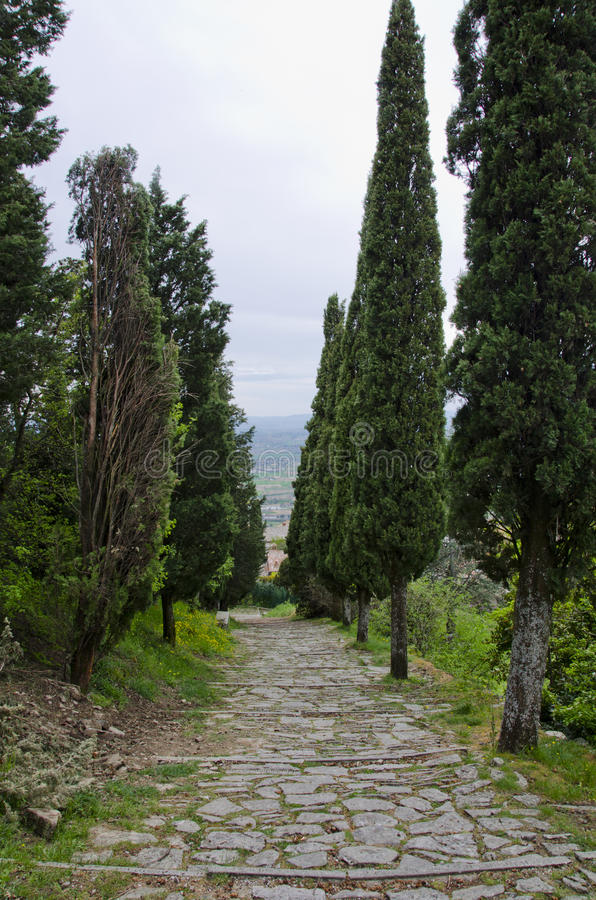 Val D ` Chiana van via Santa Margherita royalty-vrije stock foto's