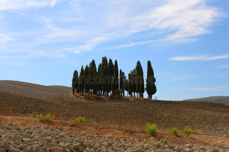 Val d'Orcia obrazy royalty free