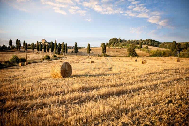 Val D ` Orcia, Tuscany Typisk Tuscan landskap med runda baler efter skörden Siena, Italien royaltyfri fotografi