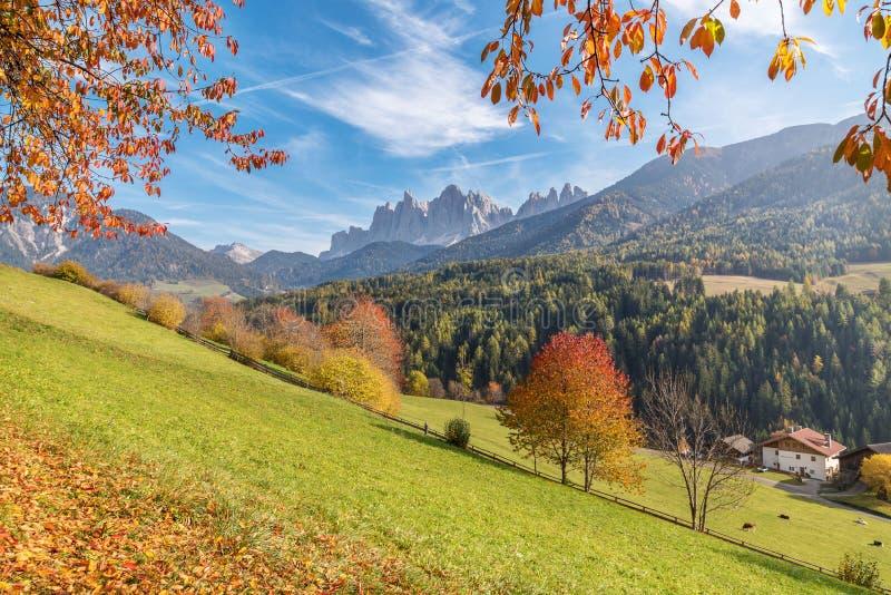 Val di Funes nas dolomites em um dia ensolarado do outono com árvores, as folhas e as montanhas coloridas, Trentino Alto Adige, I imagens de stock