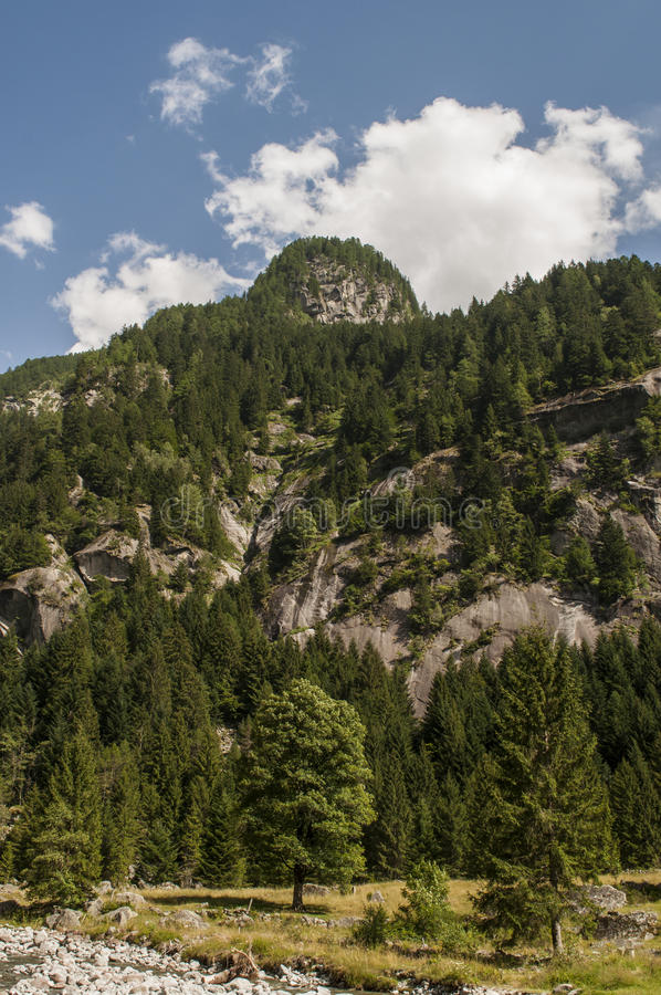 Val di Mello, Val Masino, Valtellina, Sondrio, Italy, Europe. Italy, 03/08/2017: mountain peaks of the Mello Valley, Val di Mello, a green valley surrounded by stock photo