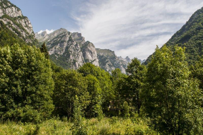 Val di Mello, Val Masino, Valtellina, Sondrio, Italy, Europe. Italy, 03/08/2017: mountain peaks of the Mello Valley, Val di Mello, a green valley surrounded by stock image