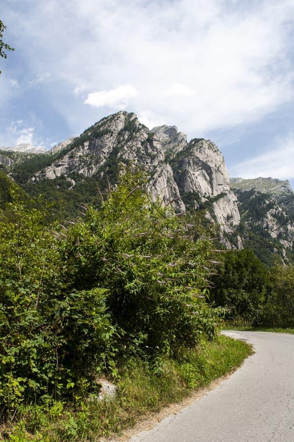 Val di Mello, Val Masino, Valtellina, Sondrio, Italy, Europe. Italy, 03/08/2017: mountain peaks of the Mello Valley, Val di Mello, a green valley surrounded by stock photos