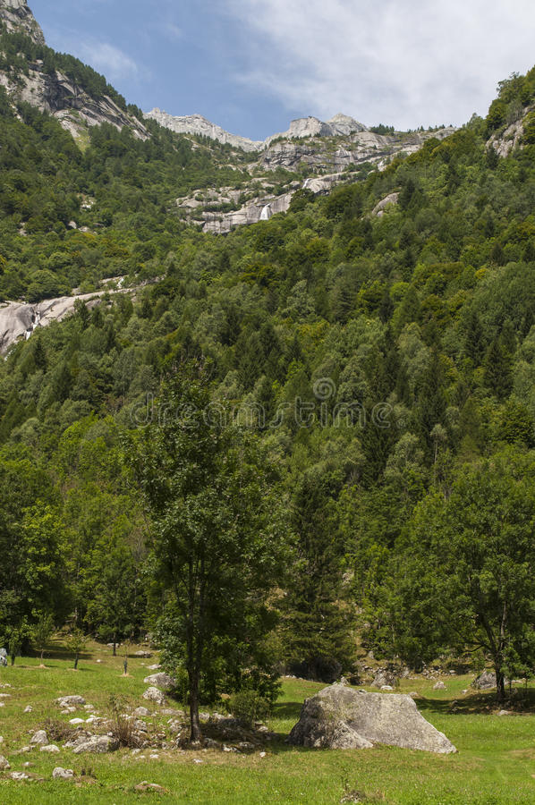 Val di Mello, Val Masino, Valtellina, Sondrio, Italy, Europe. Italy, 03/08/2017: panoramic view of the Mello Valley, Val di Mello, a green valley surrounded by royalty free stock photo