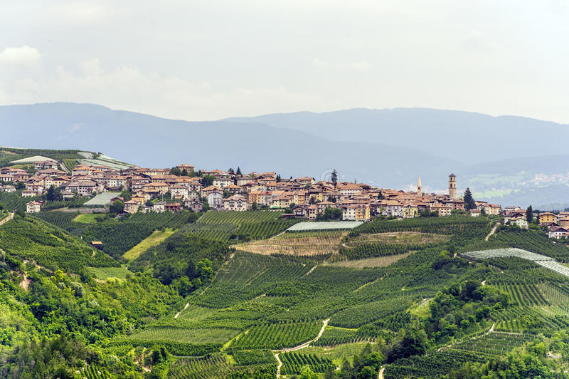 Val di Non (Trento) fotos de archivo libres de regalías