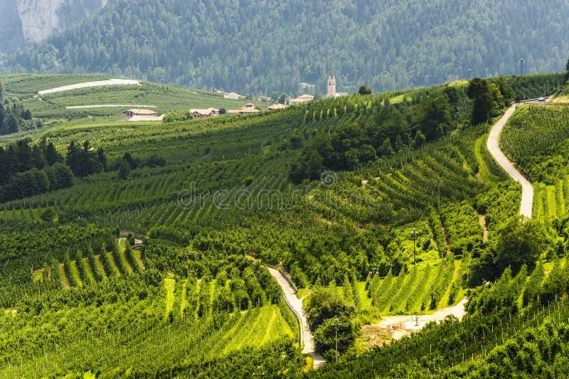 Download Val di Non (Trento) stock photo. Image of italian, trento - 26240700