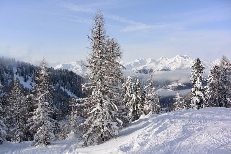 Val di Sole, Italie photos stock