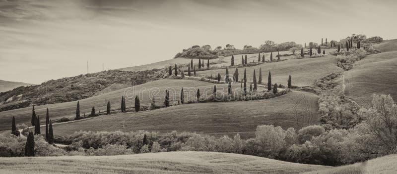 Val Dorcia有风路和小山黑白看法  免版税库存图片