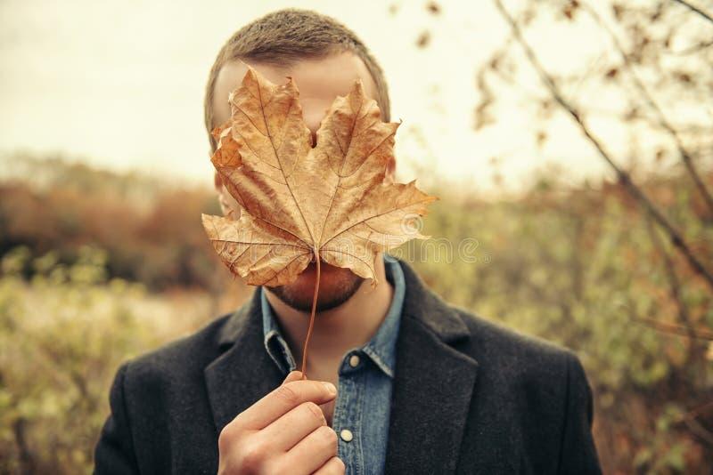 Val van de bladeren royalty-vrije stock fotografie
