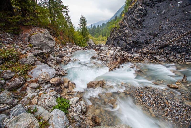 Val Veny, Italia - flusso alpino immagine stock