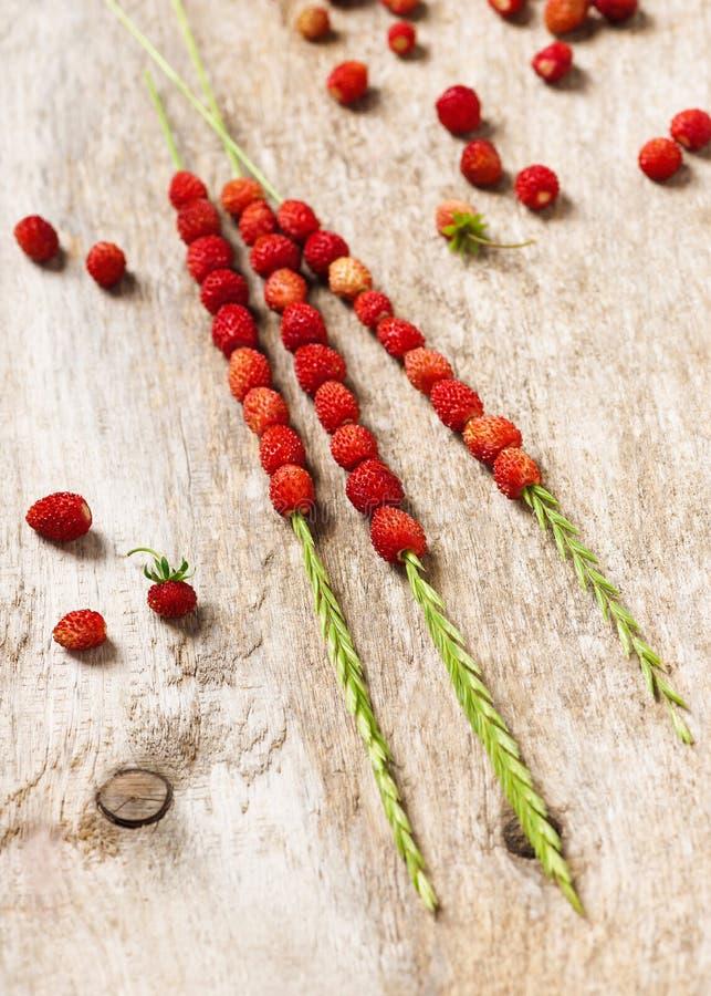 Valde nytt r?tt - l?ckra l?sa jordgubbar p? stammar f?r ett gr?s royaltyfria foton