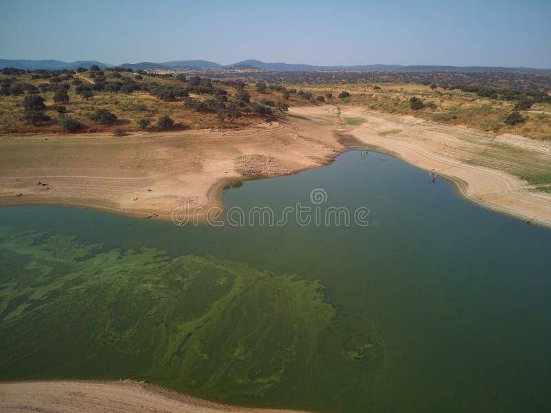 Valdecañas水库的鸟瞰图,用从海藻的绿色水和水的下降的自然线 ?? 免版税库存图片