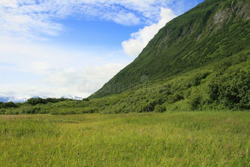 valdez Аляски сценарное стоковые изображения
