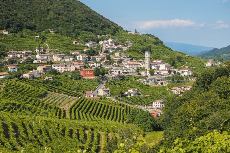 Valdobbiadene town and Prosecco vineyards in Veneto stock images