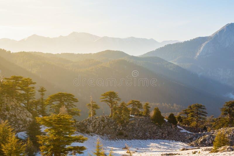 Vale bonito da montanha da mola no por do sol imagens de stock royalty free