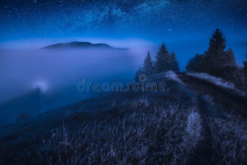 Vale coberto com a névoa na noite fotografia de stock royalty free