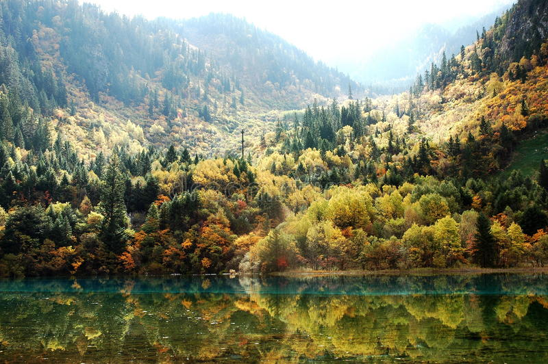 Download Vale colorido foto de stock. Imagem de verde, campo, foliage - 10055554