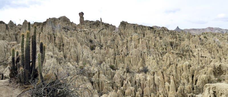 Vale da lua no La Paz Bolívia com cacto imagens de stock royalty free