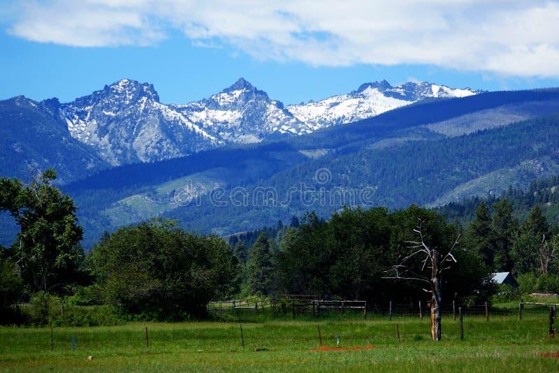 Vale da montanha do Bitterroot - Montana imagens de stock