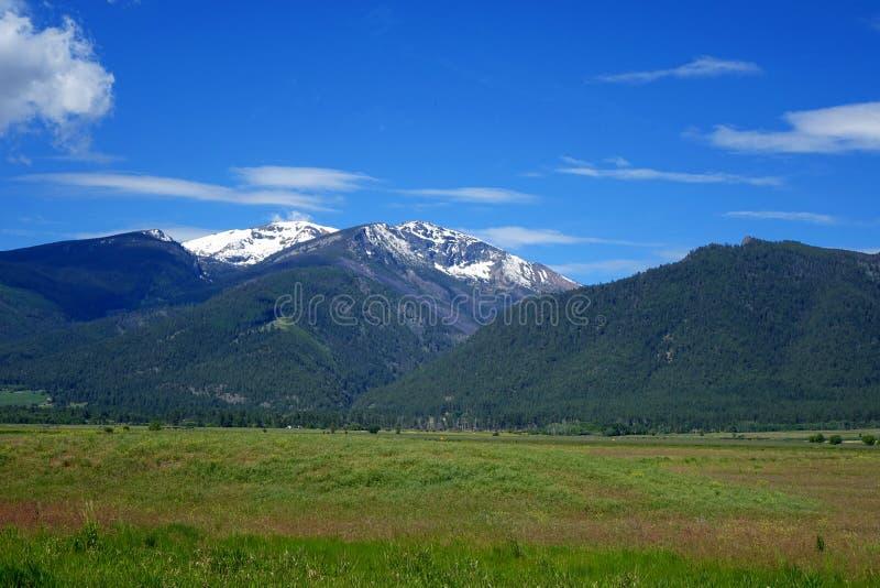 Vale da montanha do Bitterroot - Montana imagem de stock royalty free