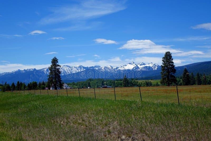 Vale da montanha do Bitterroot - Montana fotografia de stock