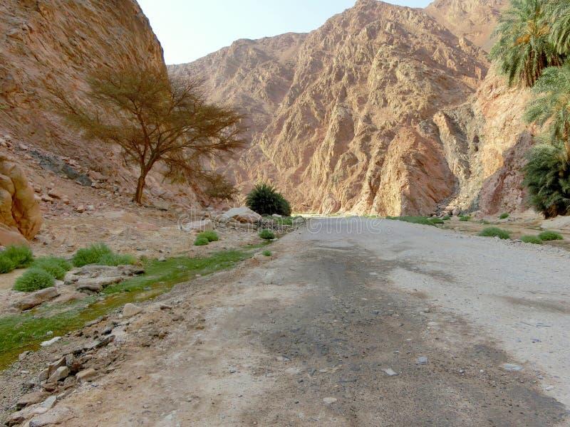 Vale da montanha em Sinai imagem de stock royalty free