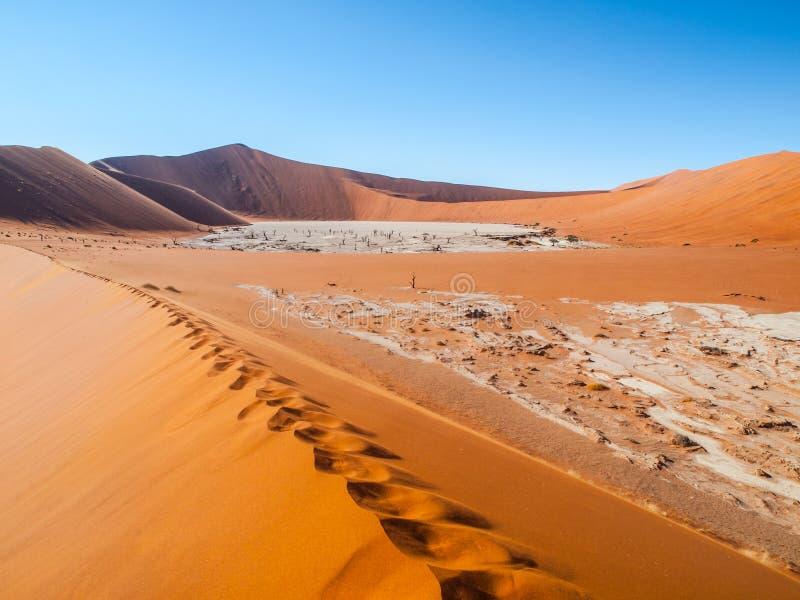 Vale da morte em namibiano Sossusvlei imagens de stock