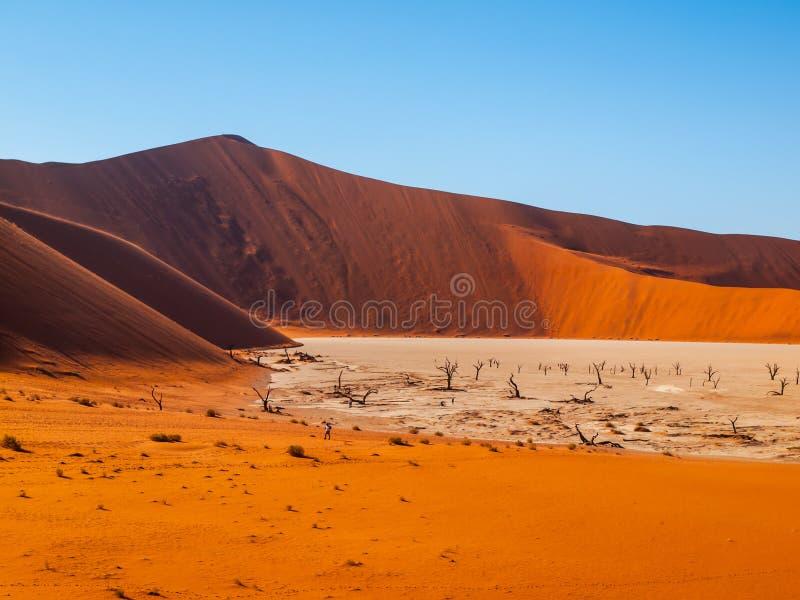 Vale da morte em namibiano Sossusvlei foto de stock