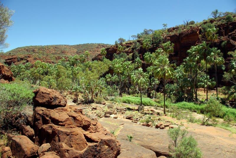 Vale da palma, Austrália foto de stock royalty free