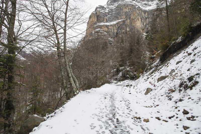 Vale de Bujaruelo no parque nacional de Ordesa y Monte Perdido com neve imagem de stock