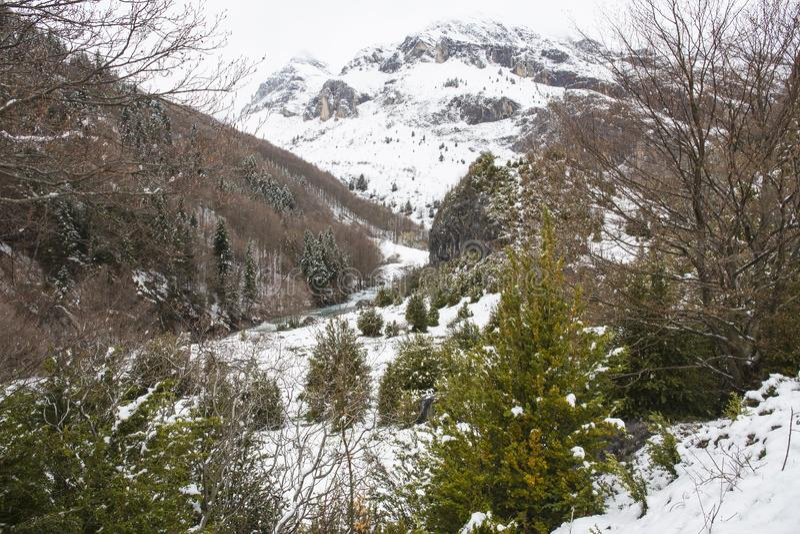 Vale de Bujaruelo no parque nacional de Ordesa y Monte Perdido com neve na montanha fotografia de stock royalty free