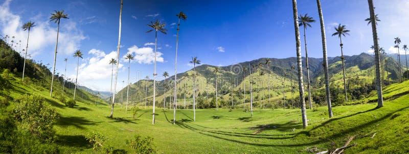 Vale de Cocora com as palmas de cera gigantes perto de Salento, Colômbia fotografia de stock royalty free