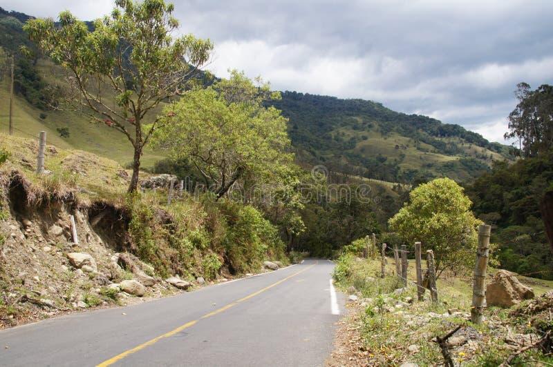 Vale de Cocora perto de Salento, Colômbia imagens de stock