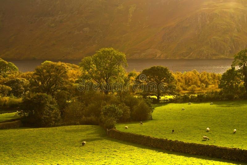 Vale de Cumbrian foto de stock royalty free