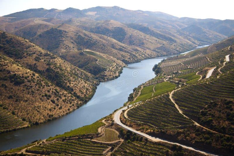 Vale de Douro imagem de stock