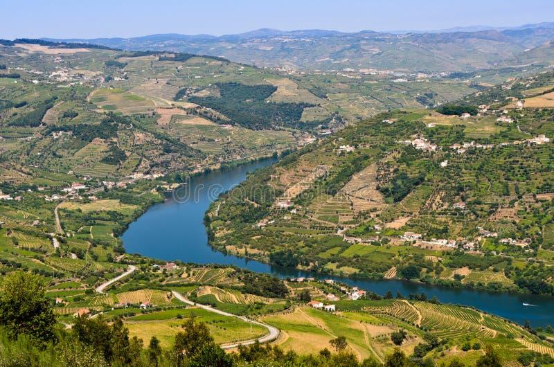Vale de Douro em Portugal fotografia de stock
