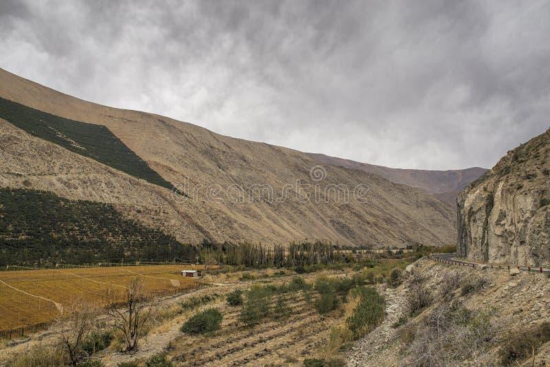Vale de Elqui no Chile foto de stock